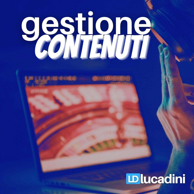 Luca Dini - Consulente SEO Gestione Contenuti